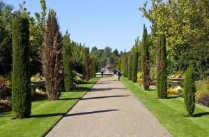 regents-park-avenue