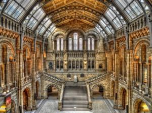 natural-history-museum-london (1)