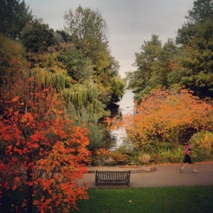 St James Park in Autumn_thumb